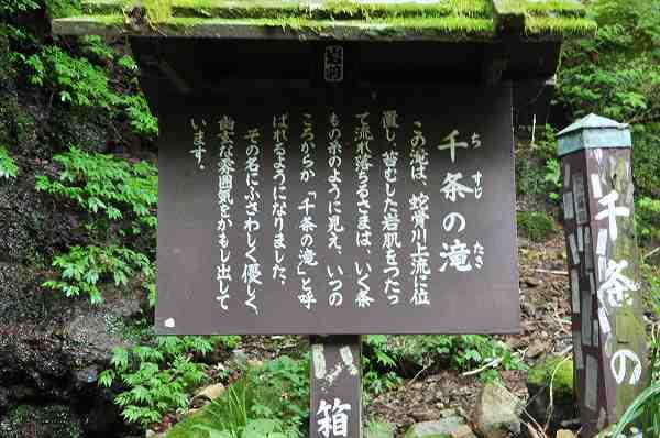 DSC_0389a.jpg